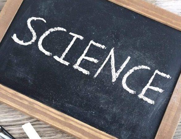 Sylwia Jaskulska: Siła dowodów naukowych